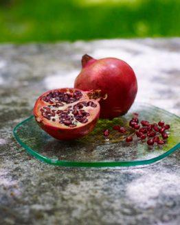 Plaque énergisante fruits Ondes de vie
