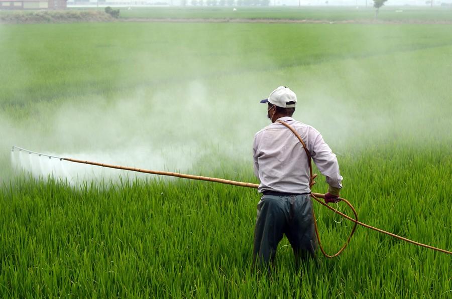 pesticides, ondes de vie